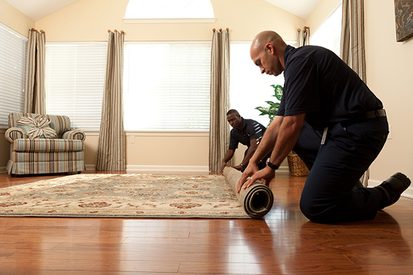 Benefits Of Carpet - ServiceMaster In Denver