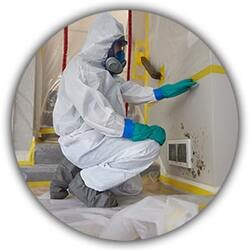 Mold-Remediation-Services-in-Denver-CO
