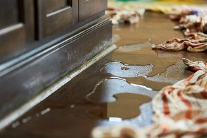Water and Flood Damage Restoration - Castle Pines, CO