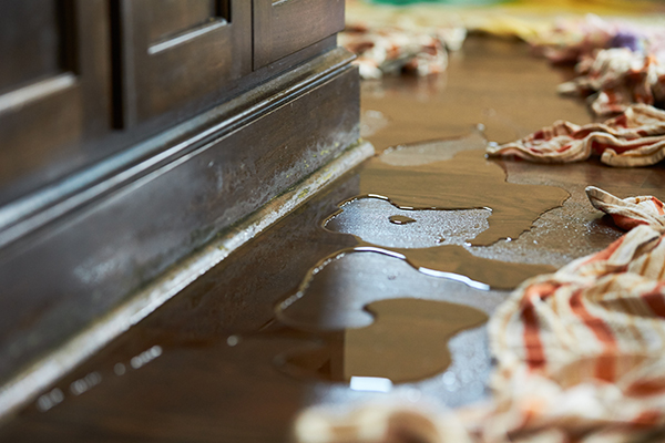 Water And Flood Damage Restoration - The Pinery, CO
