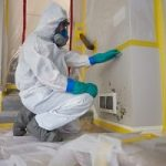 Mold-Remediation-Lone Tree, CO