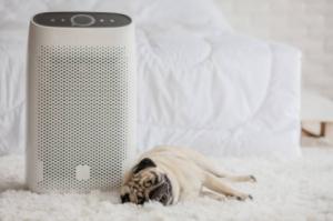 air-purifier-home-denver-co